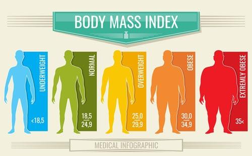 Значение индекса массы тела - инфографика