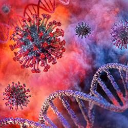 Строение вируса Covid-19 и белки антигенной структуры