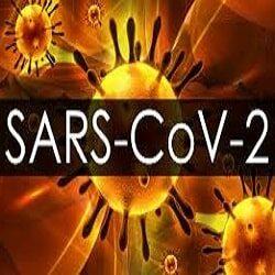 Как переводится термин SARS-CoV-2